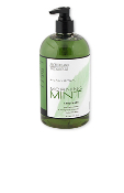 Archipelago Botanicals Morning Mint Hand Wash