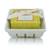 The Thymes Mandarin Coriander Bar Soap and Dish Set