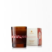 The Thymes Gingerbread Votive Candle