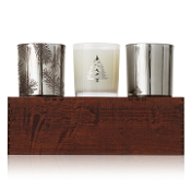 The Thymes Frasier Fir Limited Edition Candle Trio