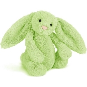Jellycat Bashful Bunny Kiwi Small