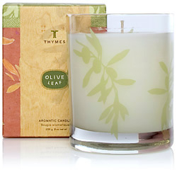 The Thymes Olive Leaf Poured Candle